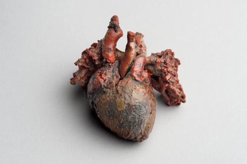Hart van een pasgeborene