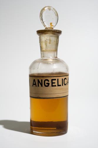 Monster van olie van de grote engelwortel