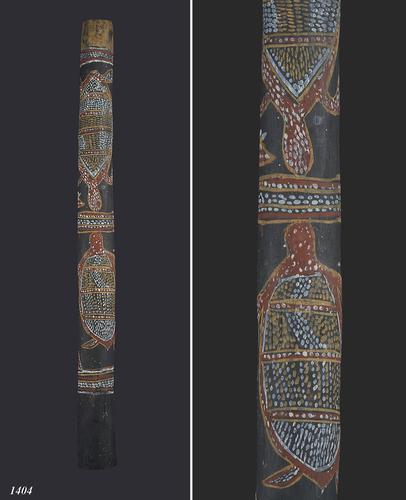 Australische didgeridoo