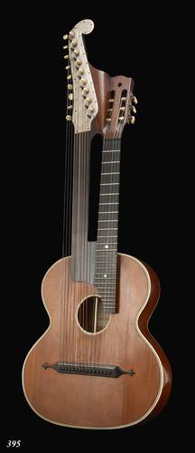 Harpgitaar met foedraal