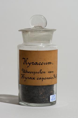 Simplex hyraceum