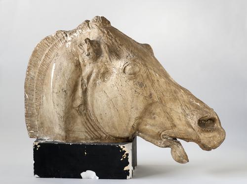 Gipsafgietsel van een paardenhoofd
