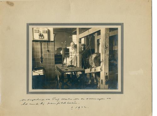 Foto van professor Wester in de Kliniek voor Inwendige Ziekten