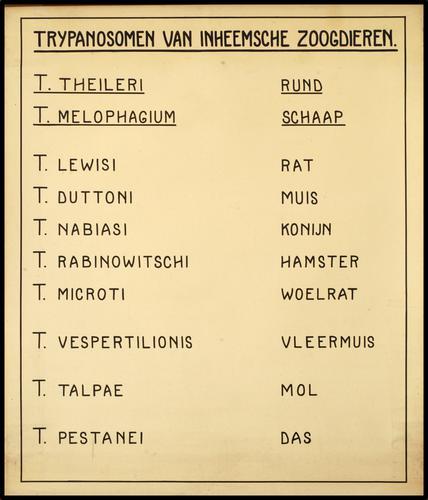 Trypanosomen van inheemsche zoogdieren