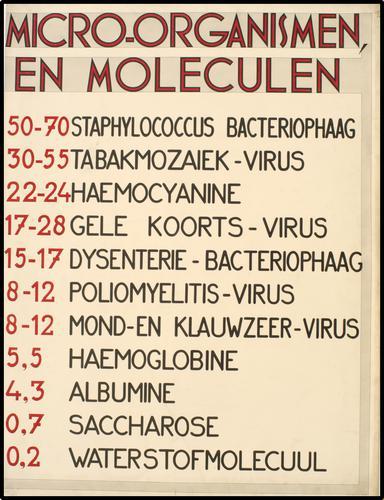 Microorganismen en moleculen