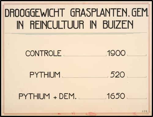 Drooggewicht grasplanten