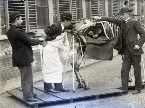 Foto van verloskunde-oefening op een fantoom