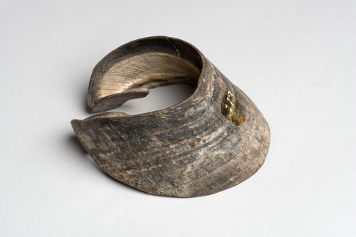 Droogpreparaat van de hoornwand van een paardenhoef