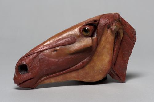 Wasmodel van een paardenhoofd