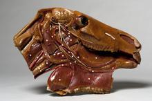Wasmodel van de anatomie van het paardenhoofd