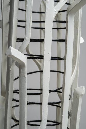 Houten model vaatbundels koningsvaren